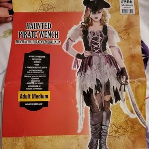 Haunted Pirate Wench Costume